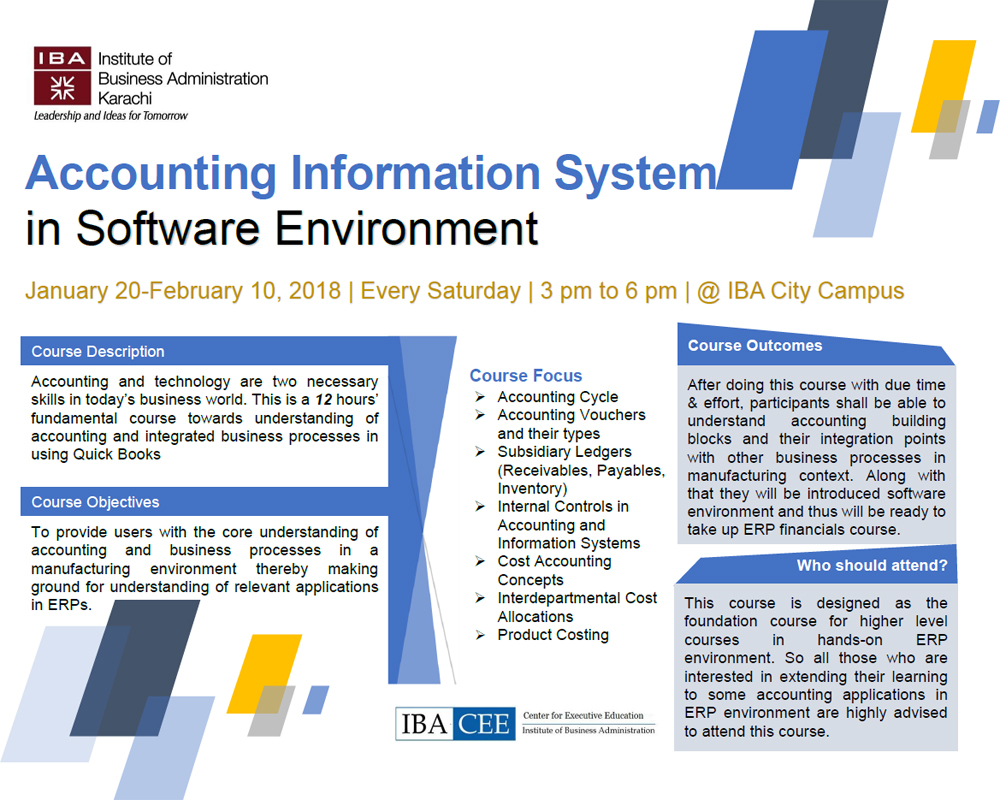 Accounting Information System in Software Environment